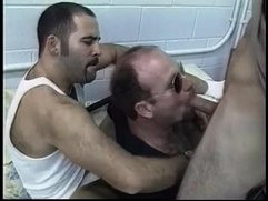 Lustful daddy bear cops hungry for some sweet jizz in threesome