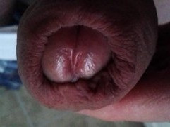 Red dick ripe for sucking fucking delicious